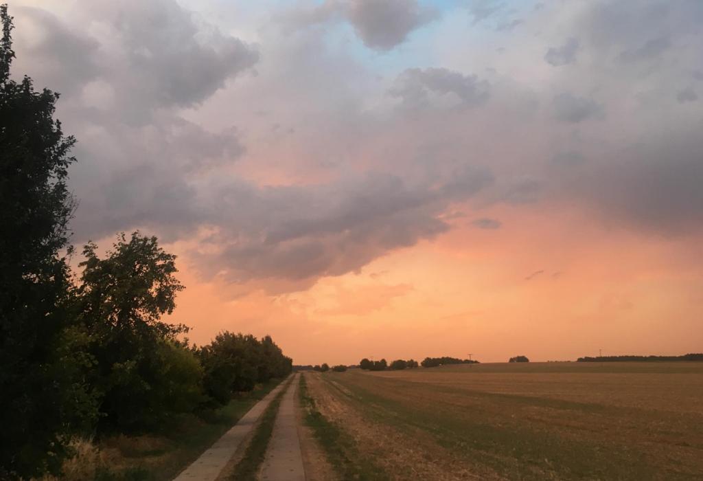 sonnenuntergang-brandenburg-feld