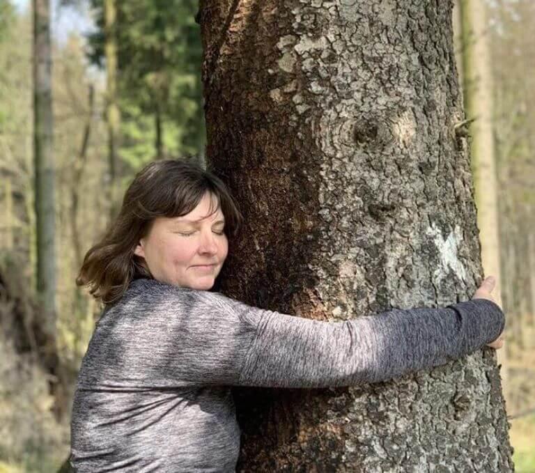 treehugging und waldbaden