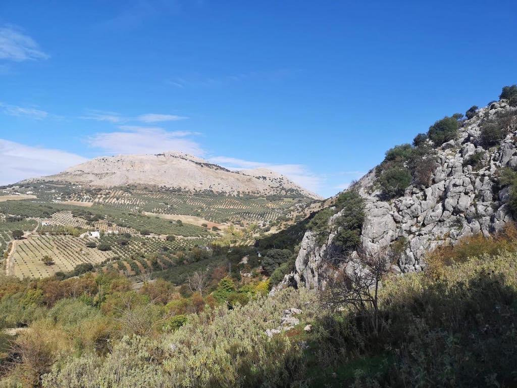10 Dinge, die du garantiert noch nicht über Andalusien gewusst hast