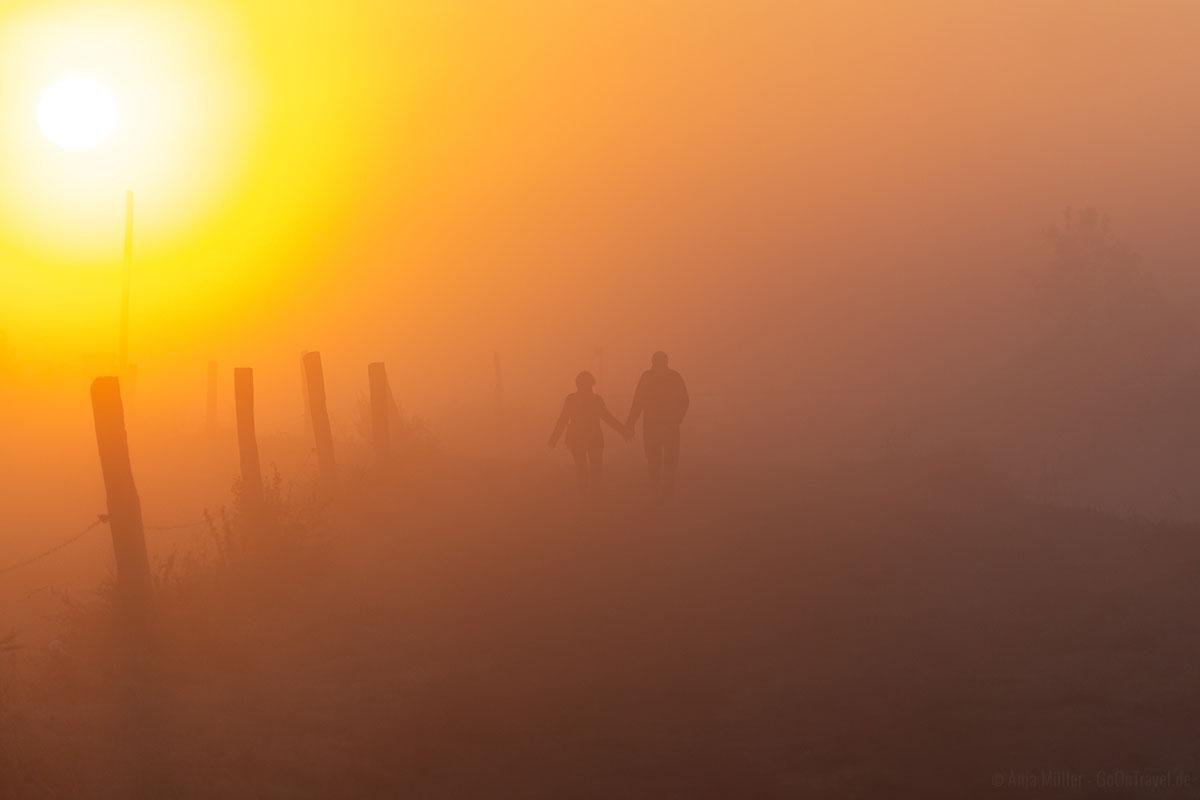 Sonnenaufgang Kraniche Linum