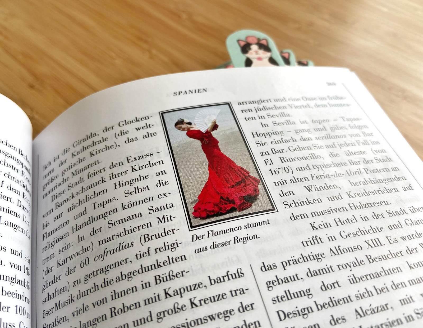 flamenco grafik in reiseführer