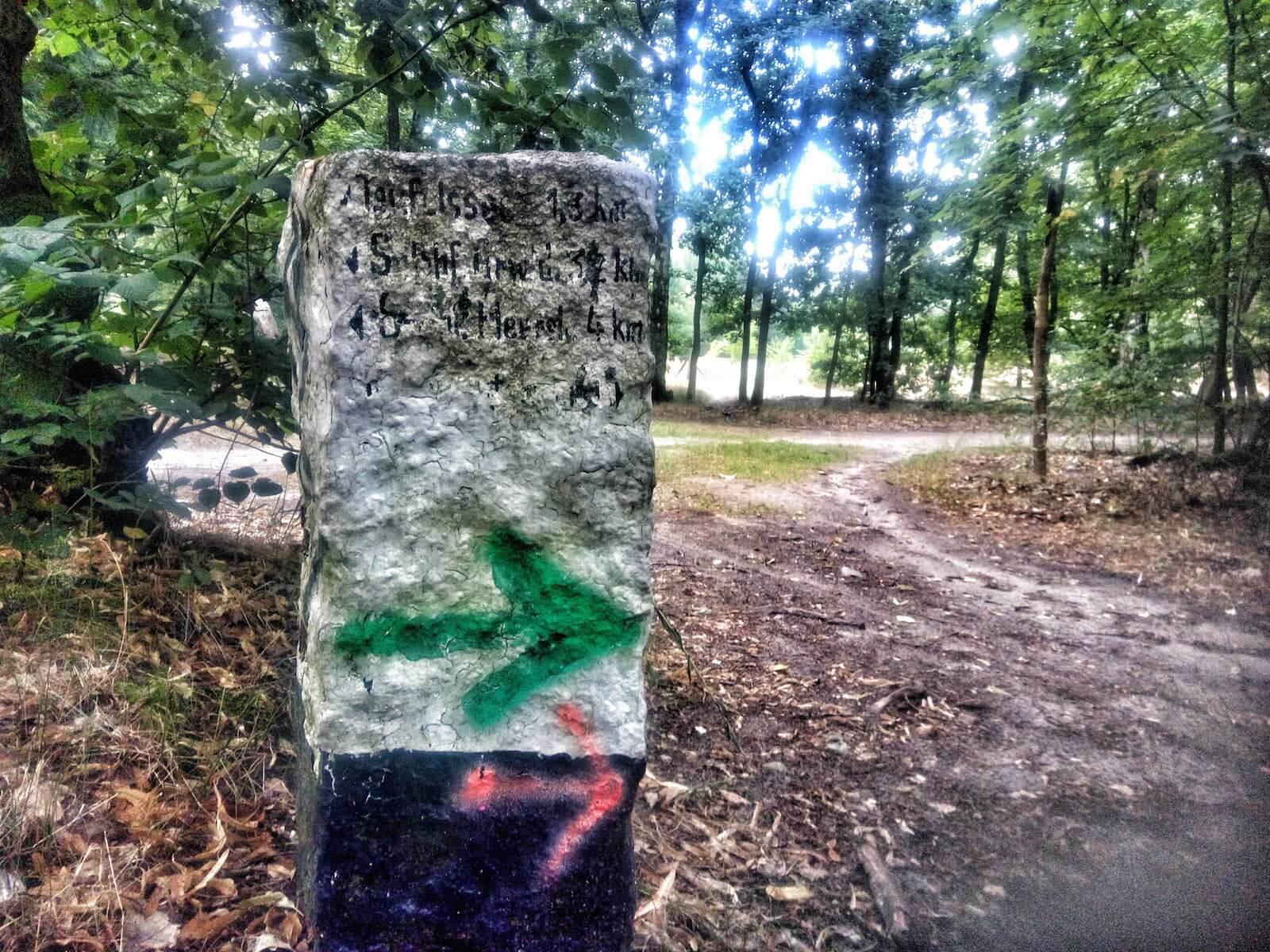 Trail-Running Wegweiser im Wald