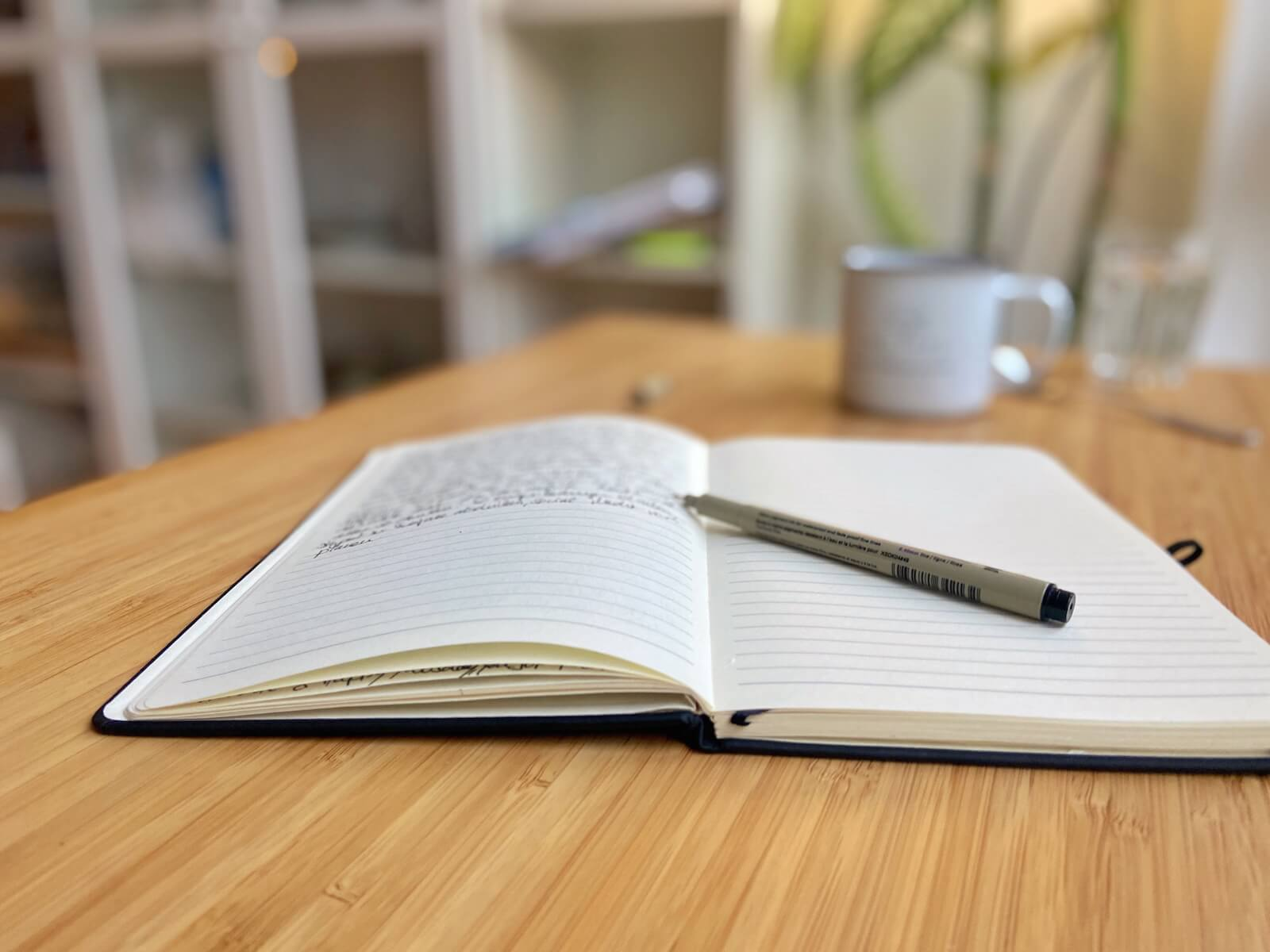 morgenroutine journaling