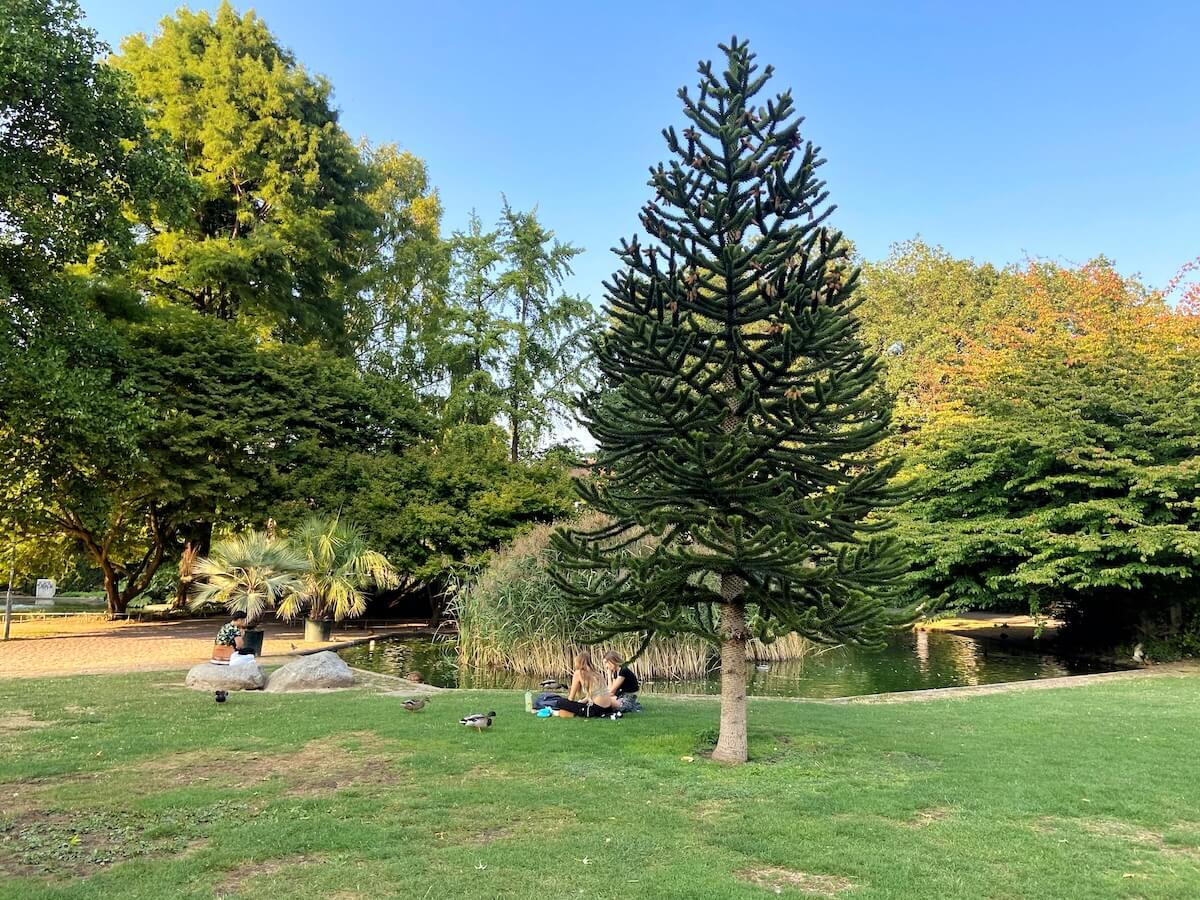 Der Stadtgarten in Freiburg
